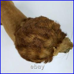 Antique Circus Lion Taxidermy toy REAL FUR