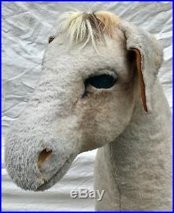 Early 20th C Barnum & Bailey Life Size Donkey Circus Oddity